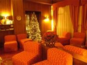 Hotel Del Lago 122010 019